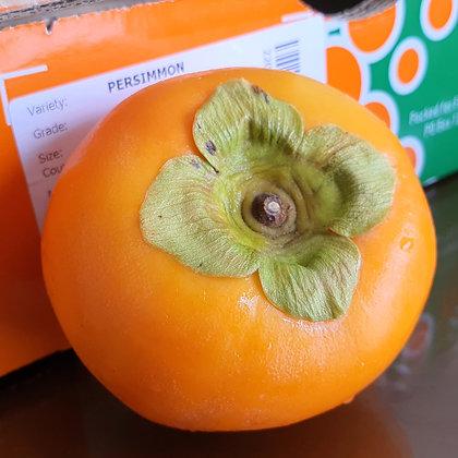 New Zealand Persimmon (pc)