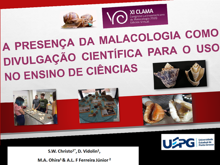 S.W. Christo, D. Vidolin, M.A. Ohira & A.L. Ferreira Jr