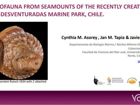 Cynthia M. Asorey, Javier Sellanes & Jan M. Tapia