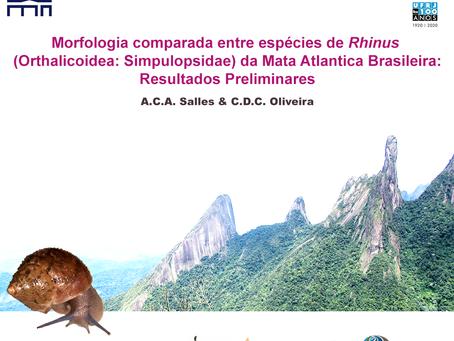 A.C.A. Salles & C.D.C. Oliveira