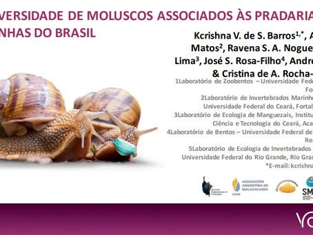 Kcrishna V. De S. Barros, Alisson S. Matos, Ravena S. A. Nogueira, et al.