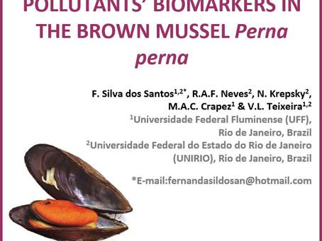 F. Silva dos Santos, R.A.F. Neves, N. Krepsky, M.A.C. Crapez & V.L. Teixeira