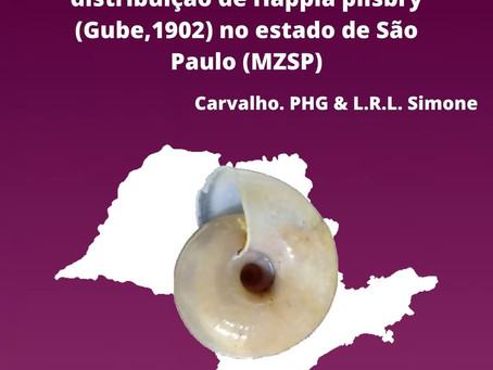P.H.G. Carvalho & L.R.L. Simone
