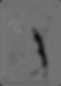 free-vector-pga-tour-logo_090397_PGA_Tou