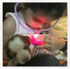 Alaina Loves Puppies