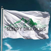 Sleepy Dragons Adventure Racing