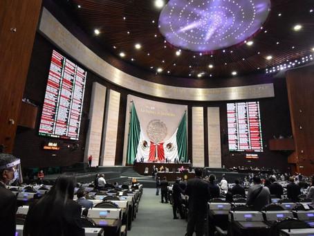 Lourdes Mendoza Peñaloza   ¿Habrá o no extraordinario en Diputados?