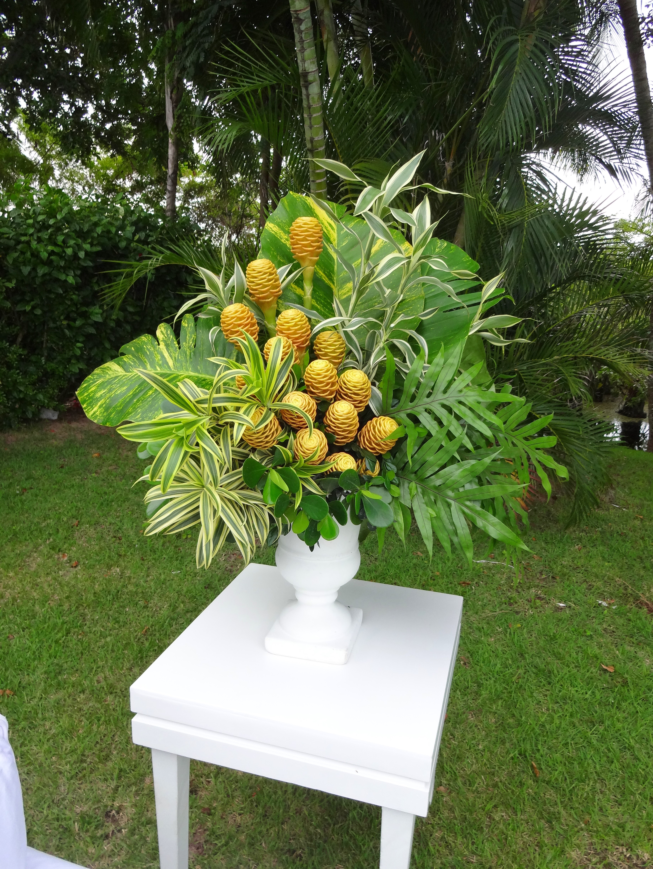 Tropical amarelo