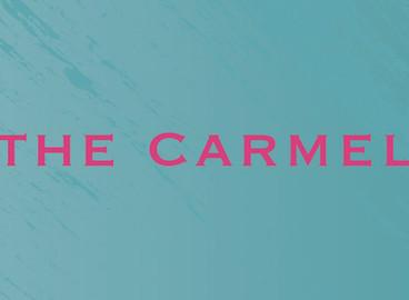 The Carmel 驗樓問題 01.jpg