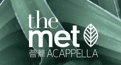 The met acapella defect pic 01.jpg