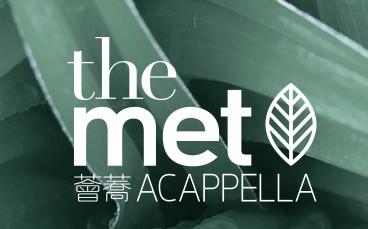 The met acapella defect pic 01.jpg