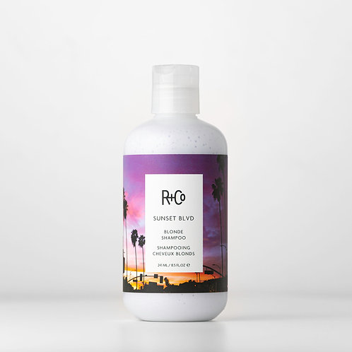 R+Co Sunset Blvd Shampoo