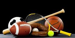 Sport Participation Summary