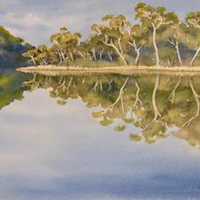 Woosdford Lake Reflections