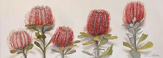 W.A Wildflowers Triptych, 3 x 22cm x 62