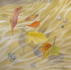 Summer drifts into Autumn