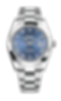Datejust41_126334_edited.png