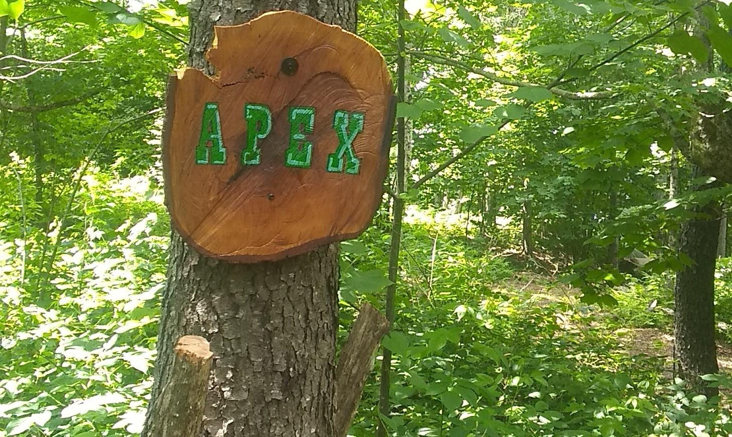 Apex Sign.jpg