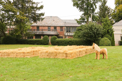 Toddler Hay Maze