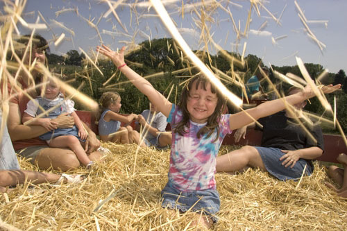 Play in the Hay
