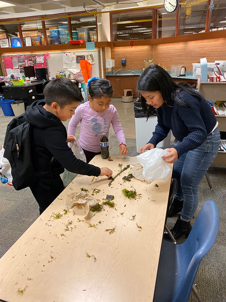 Youth Development STEAM Programs offered