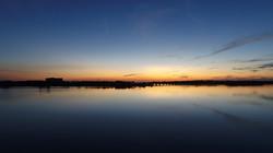 wild-heron-aerial-sunset-web1