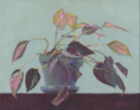 201908_Study in Pink and Green.jpg