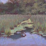 Dusk at the Marsh