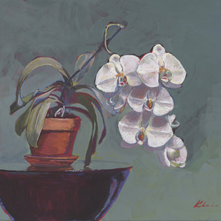 The Orchid Pot