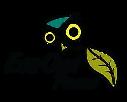 Eco Owl Logo.png
