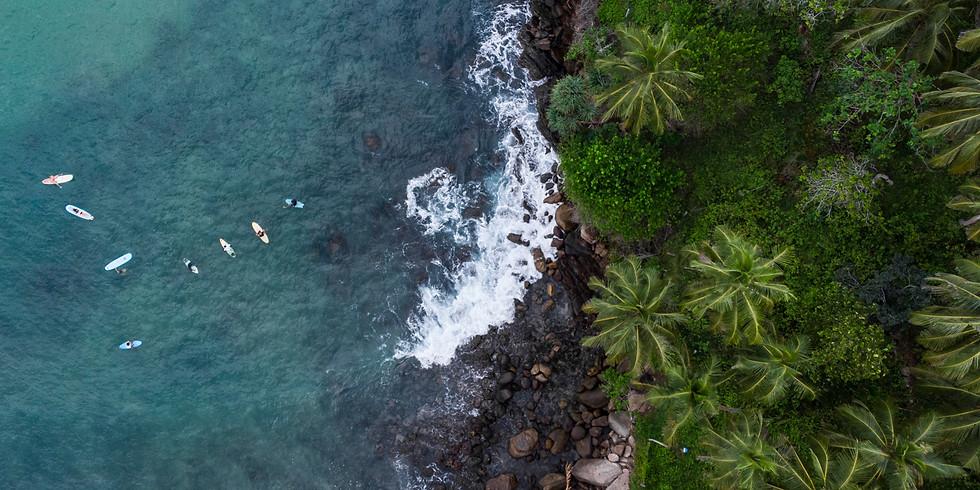 Yoga & Surf Sri Lanka