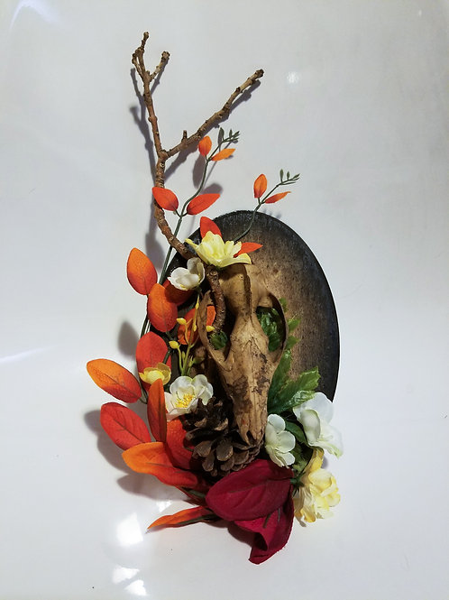 Possum Skull & Flowers