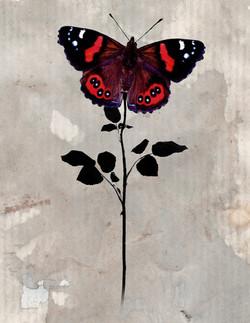 Long Stem Butterfly