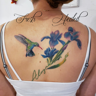 hummingbird-irises-finished.jpg