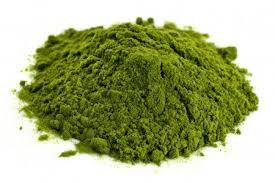 Wheatgrass orgánico en polvo a granel, desde 1g