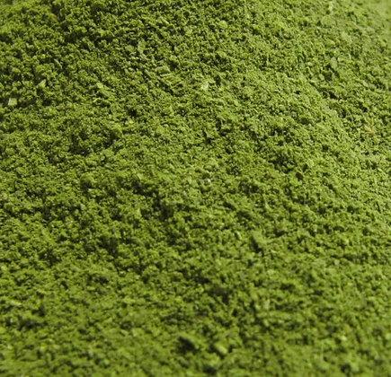 Moringa orgánica en polvo a granel, desde 1g