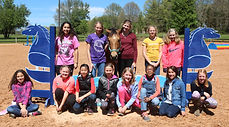 Horse party picture