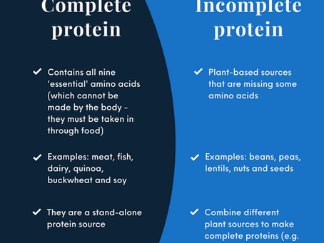 The importance of protein