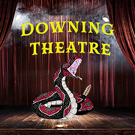 Downing Theatre small2.png