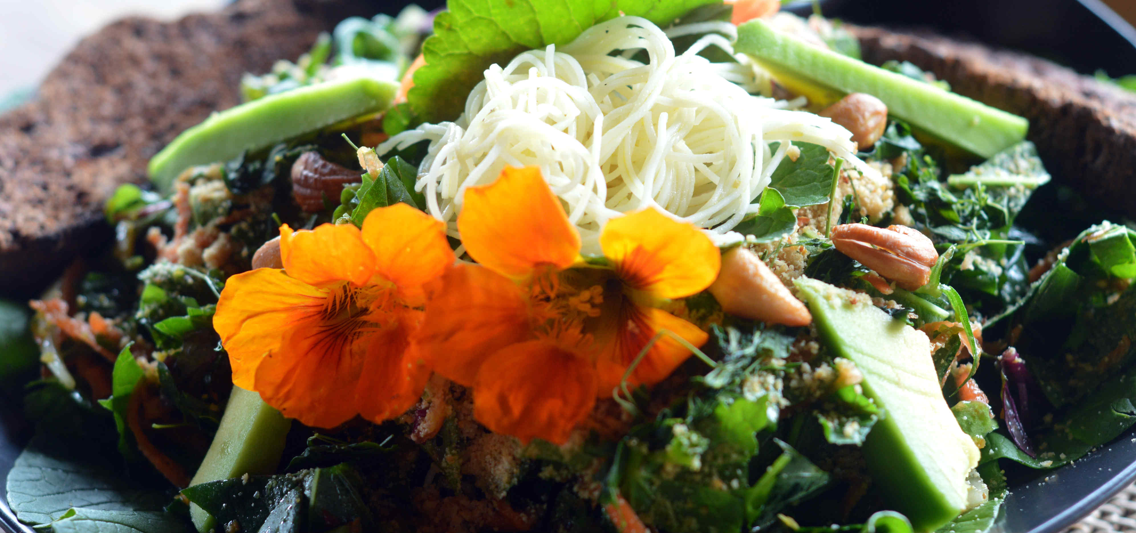 Our Special Eco Lodge Organic Salads