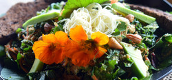 Our Special Eco Lodge Salads