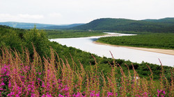 Karasjoki summer in Lapland