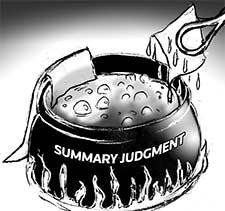 ADMINISTRATIVE PROCESS SUMMARY JUDGEMENT TEMPLATE
