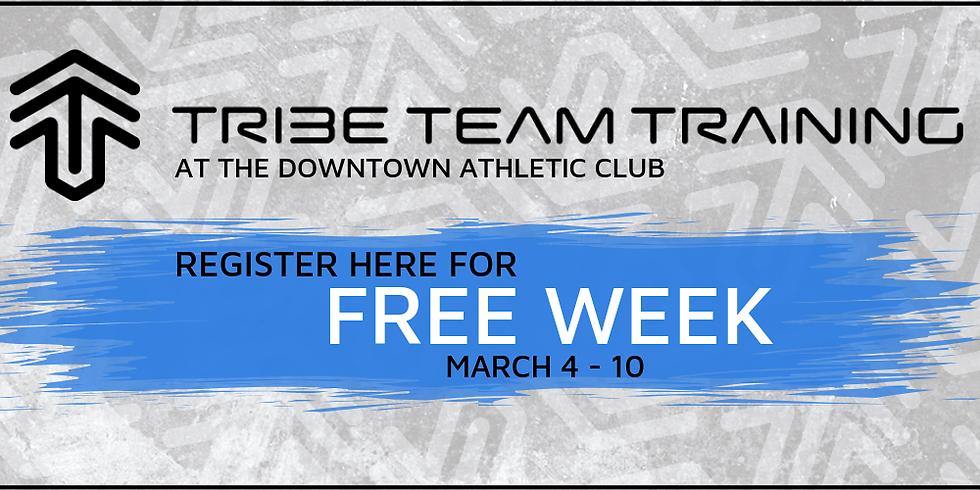 Tribe Season 2 FREE WEEK!