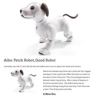 Aibo: Fetch Robot, Good Robot
