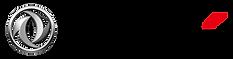 DFSK Logo_horizontal_png.png
