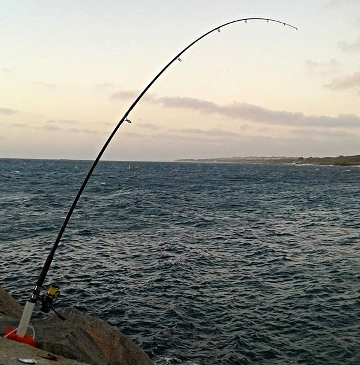 Rocksteady rod holder for Fishing rod in spanish