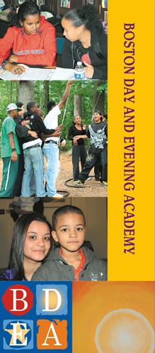 BDEA brochure