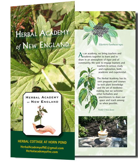 Herbal Academy Brochure