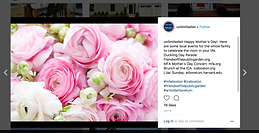Unlimited Sotheby's Instagram
